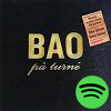 BAO på turné (2006)