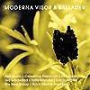 MODERNA VISOR & BALLADER (2001)